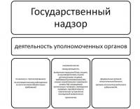 Надзор как функции государственного управления диплом