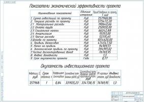 Показатели экономической эффективности проекта участка мойки